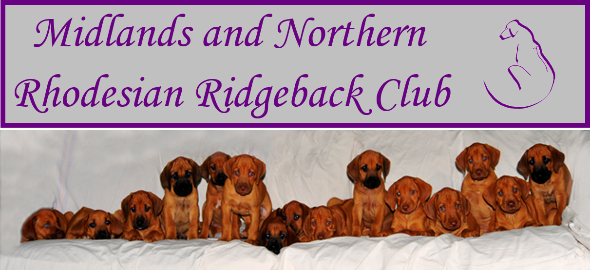 Midlands and Northern Rhodesian Ridgeback Club